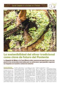 Suplemento CampaÑa Aceite 2021 Page 0001